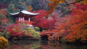 Был ли Киото столицей Японии?